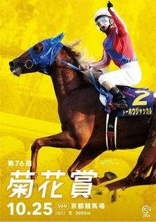 菊花賞2015予想.jpg